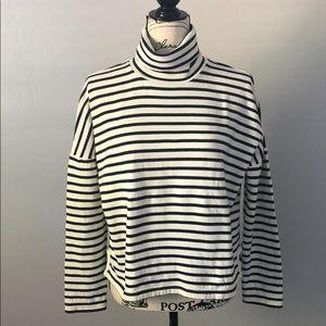 Madewell Sailor Stripe Turtleneck Sweatshirt